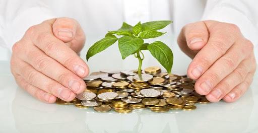 Yatırım Hizmetleri ve Faaliyetleri Nelerdir?